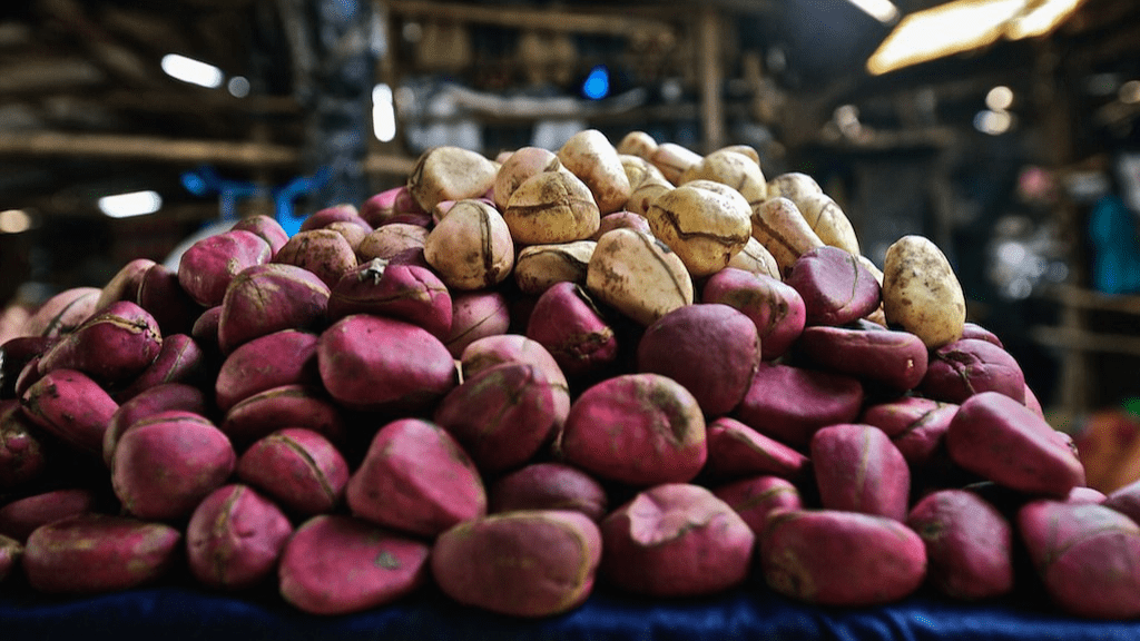 Kadealo, Exotic African Fruits, Kola Nut