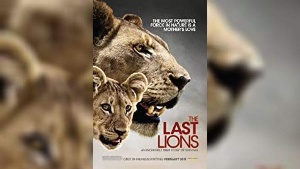 Kadealo,Wildlife Documentaries, Documentaries on Africa: African Documentary, The Last Lions