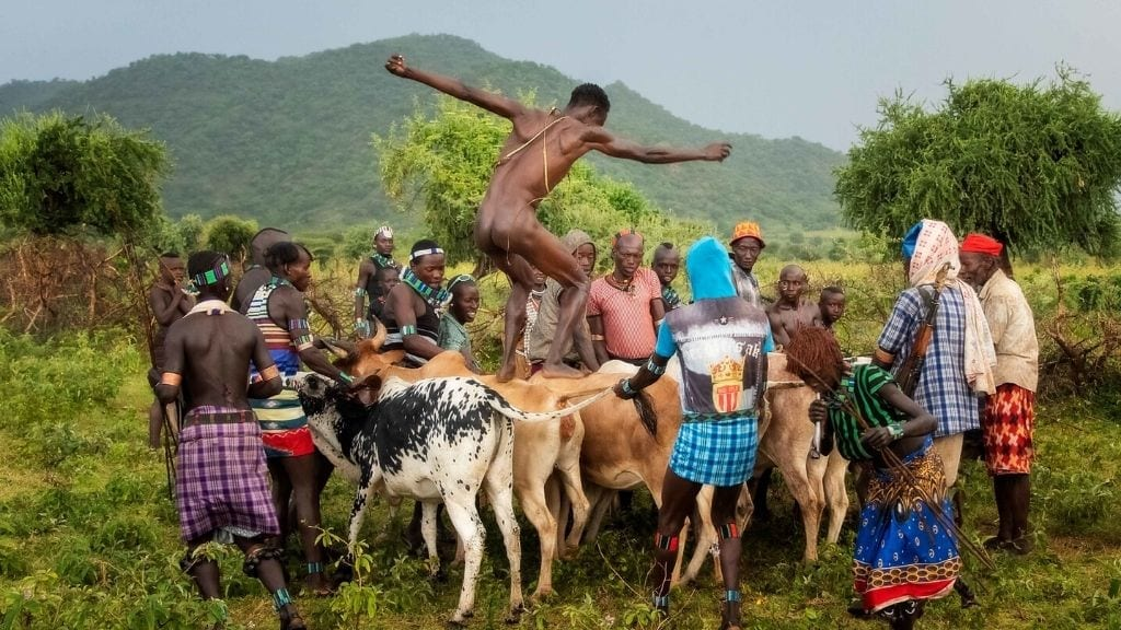 Kadealo, African Traditions, Bull Jumping